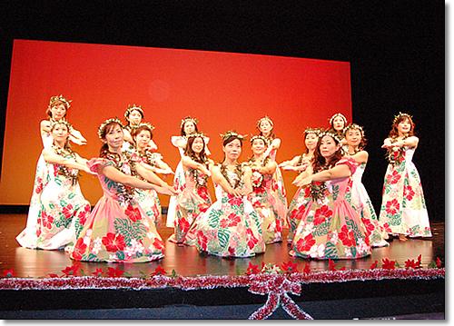 フラサークル プルメリア 2008クリスマスコンサート