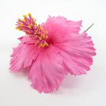フラ衣装ヘアアクセサリー フラワーピック BIGハイビスカス ピンク