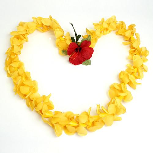フラ衣装用ハワイアンレイ プアケニケニオレンジ